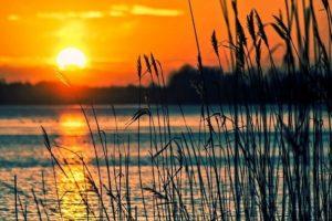 Jezioro Dominickie – doskonałe miejsce na urlop w Wielkopolsce.